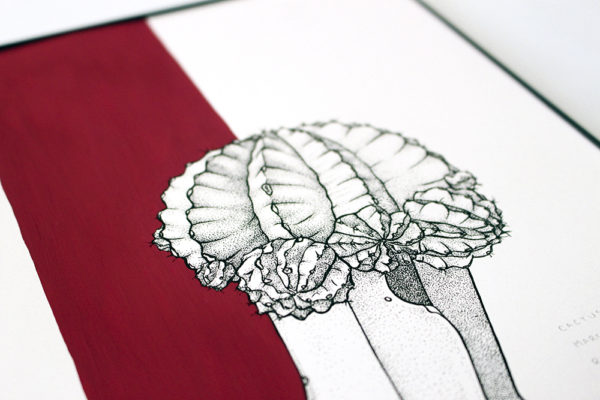 Original cactus illustration in pen with crimson gouache accents