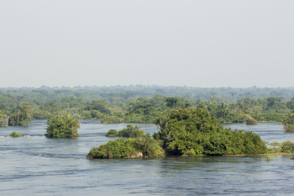 Overlooking the Nile River at Chobe Safari Lodge
