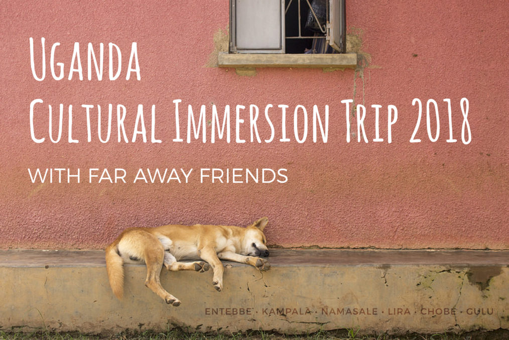 Uganda Cultural Immersion Trip 2018 with Far Away Friends